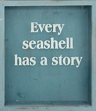 Every Sea Shell Has A Story Chapel Of Hope Stories